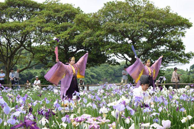 07 - Miyajidake Iris Fest