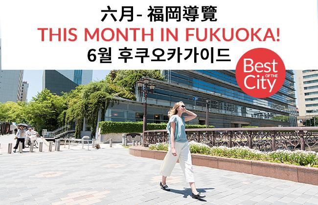 fn210-web-top-banner
