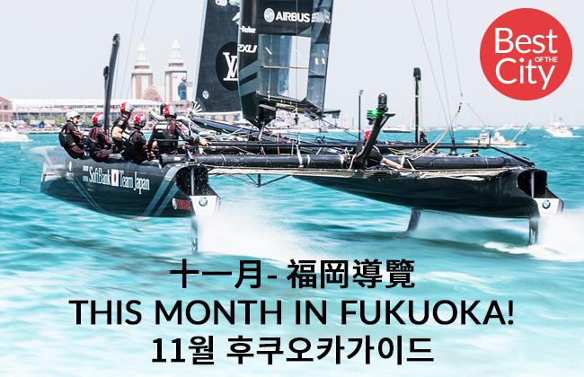 fn215-web-top-banner